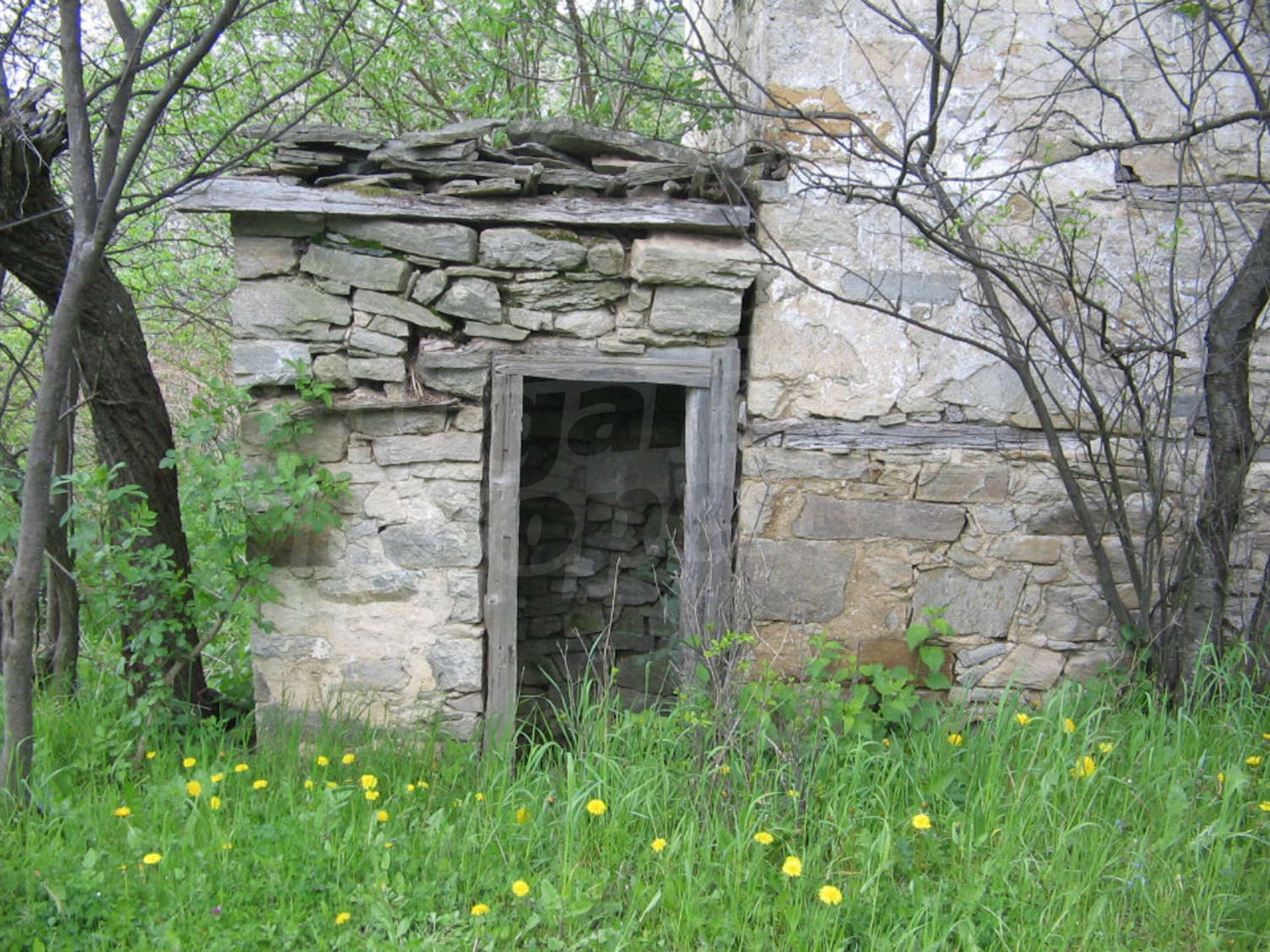 House for sale near kardjali bulgaria two houses in need for Large garden stones for sale