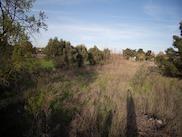 Земеделска земя  в  Каликратия