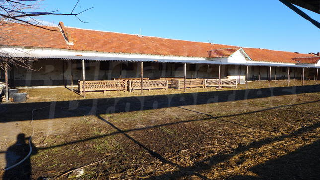 Farms for sale and rent in Bulgaria  Bargain property, Farm for sale