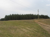 Forest for sale near Vidin