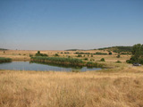 Investment land for sale near Elhovo