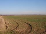 Agricultural land for sale near Stara Zagora