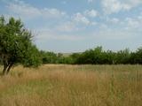 Land for sale in Novo Selo