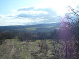 Land for sale near Gabrovo