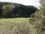 Парцел с гледка към гора близо до Банско