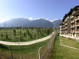 White Fir Resort