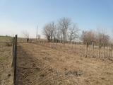 Land near Vidin