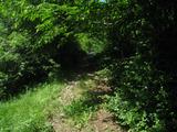 Парцел за къща в село на 48 км от Своге