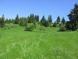 Парцел земя за строеж в местността Рожен в Родопите