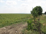 Big land for sale, 10 km away from Yambol