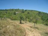 Регулиран парцел във вилна зона в село близо до София