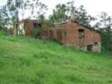 Old fallen house with spacious garden in picturesque rural area
