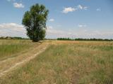 Нерегулиран парцел близо до Пловдив