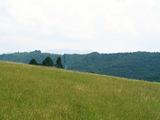 Земеделска земя  в квартал на 6 км от центъра на град Габрово