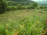 Атрактивна земеделска земя в планините край Етрополе
