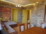 Renovated 2-bedroom apartment in Hipodruma
