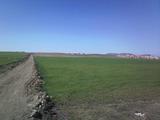 Просторен парцел земя на 8 км от курорт Слънчев бряг