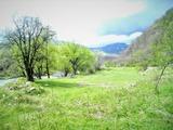 Земельный участок рядом с рекой и лесом в деревне Рибарица