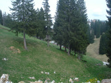Picturesque plot of development land in Pamporovo