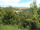 Участок  в 8 км от деревни Боженците