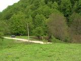 Урегулиран поземлен имот и земеделска земя в с. Рибарица