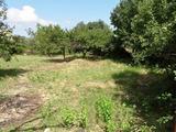 Regulated land plot