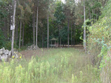 Investment land in pine forests near camping Arapya