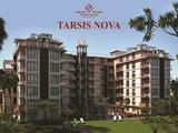 Тарсис НОВА / Tarsis NOVA
