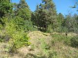Сельскохозяйственная земля в 1 км от г. Велинград