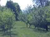Land in Apriltsi