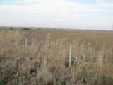 Agricultural land for sale 10 km from Plovdiv