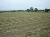 Land for sale near Radnevo