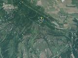 Large forest near the Belogradchik Rocks