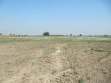 Development land near Plovdiv