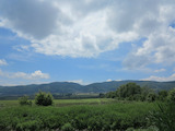 Large agricultural land 20 minutes from the downtown area of Sofia