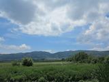 Просторна земеделска земя на 20 минути от центъра на София