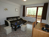 1-bedroom apartment in Pine Ridge near Borovets
