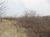 Земеделска земя на 5 км от Пловдив