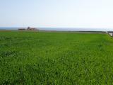 Инвестиционная земля вблизи г. Добрич