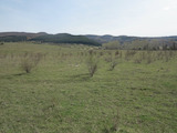 Agriculturall land with beautiful mountain panorama in Lozen