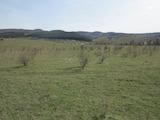 Земеделска земя с красива планинска панорама в село Лозен