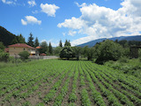 Development land with beautiful mountain view in the village Govedartsi