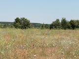 Agricultural land near Varna