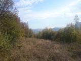 Земеделска земя  на 24 км от гр. Велико Търново