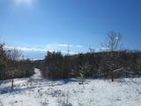 Парцел за инвестиция до минерални извори в СПА курорт Пчелински бани