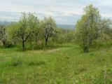 Парцел в регулация в село на 3 км от Велико Търново