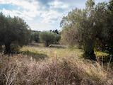 Земеделска земя  в  Акти Елиас