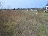 Regulated Plot of Land Located in Chernomorets