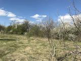 Голям УПИ  в село на 17 км от Велико Търново