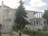 House with 7 bedrooms in Filyro